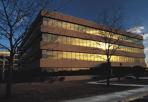 commercial reflective windows corporate buildings rental properties